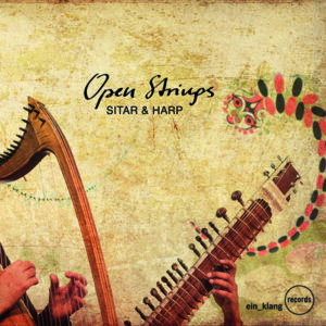 Niki Fliri/Deobrat Mishra: Open Strings