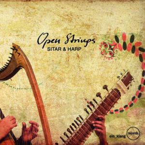Niki Fliri/Deobrat Mishra: Open Strings